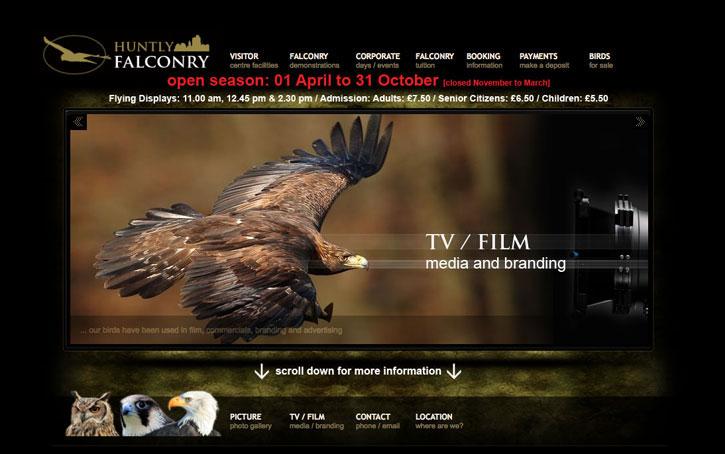 web design Huntly Falconry